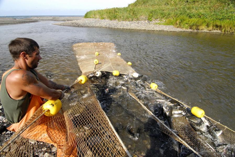 рыбалка на острове сахалин видео