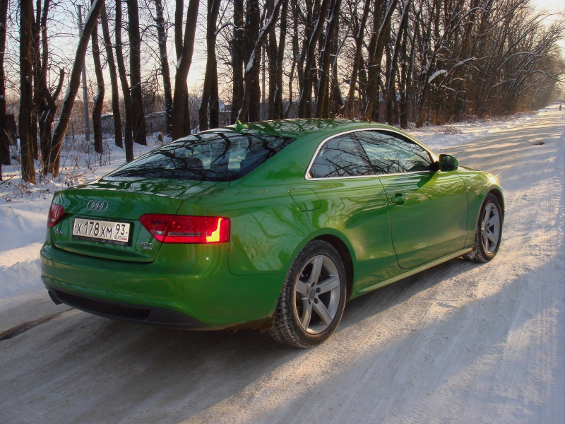 ауди а6 зеленого цвета фото