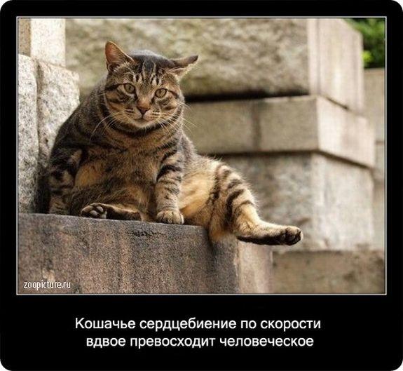 sm_users_img-232514.jpg