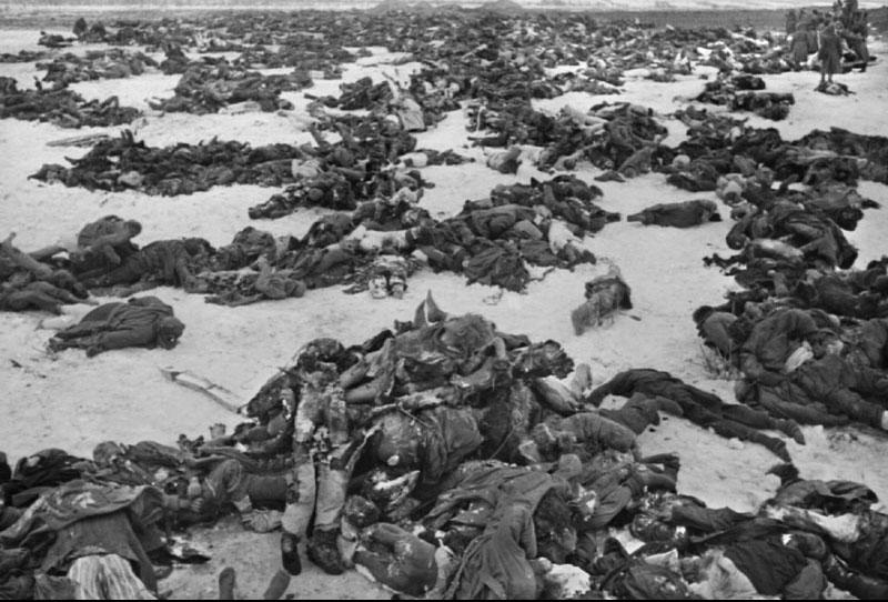Район сталинграда зима 1943 г